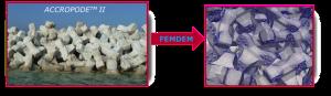 acropode_to_femdem